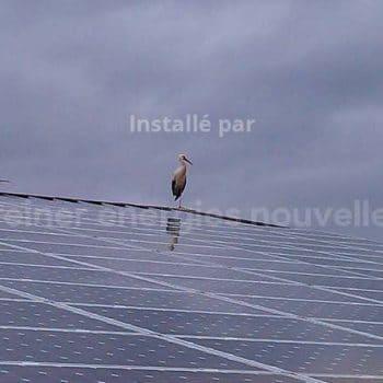 IMAG0015 (5)-greiner-installation-photovoltaique-wangen-67520-67520